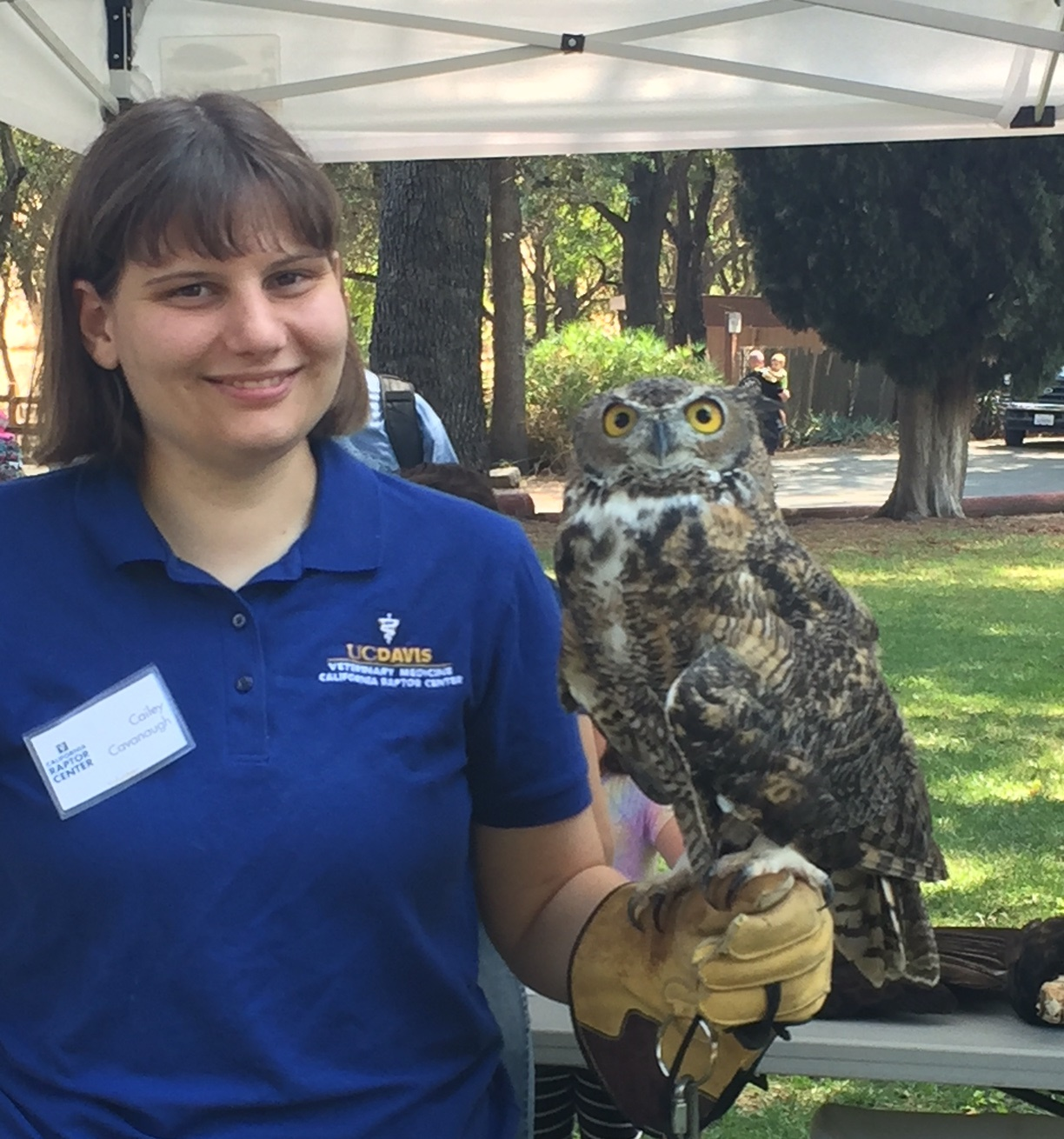 Raptor Center Volunteer Caily Cavanaugh with great horned owl